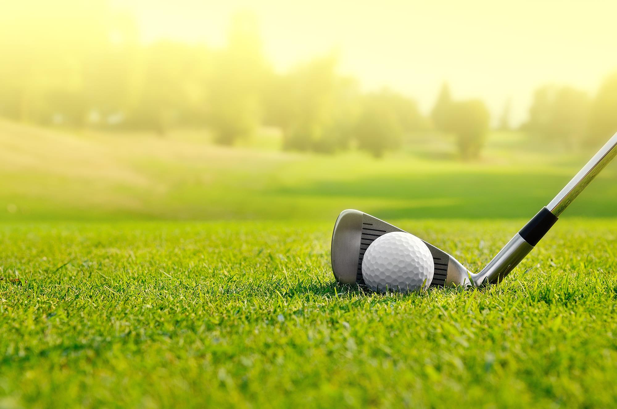 provoyage golf